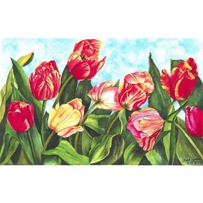 Tulip Heaven (NEW)